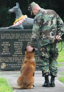 Rico at World War II Memorial, War Dog Cemetery