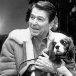 Ronald Reagan: Rex the Cavalier King Charles Spaniel