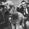Richard Nixon: Vicki the Poodle