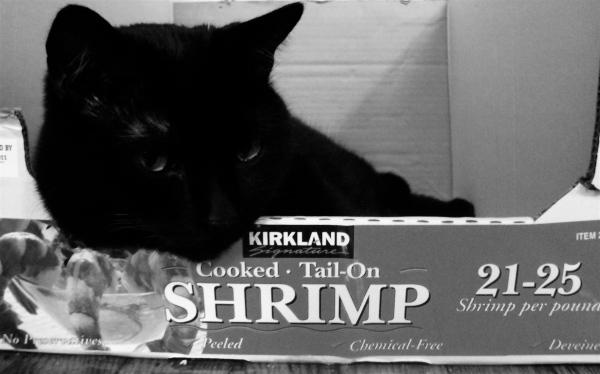 Shrimp's good but I prefer the box.